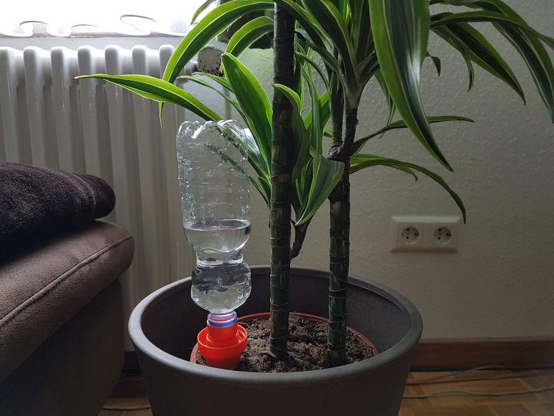 Wasserspender mit PET Flasche